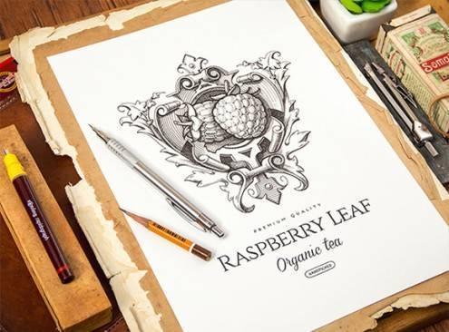 14-logo-sketches