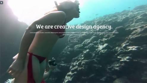 14-video-background-wordpress-themes